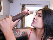 Small Asian Brenna Sparks Meets Mandingo's Big Black Cock
